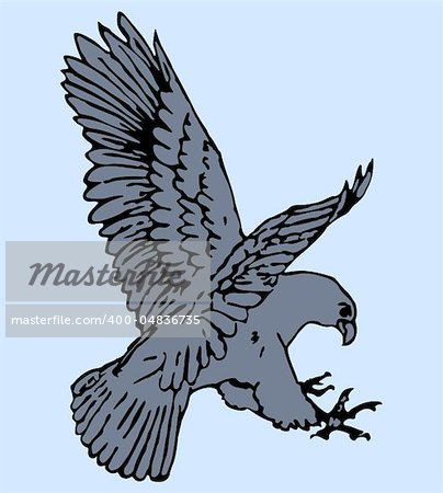 Vector illustration of eagle Stock Photo - Budget Royalty-Free, Image code: 400-04836735