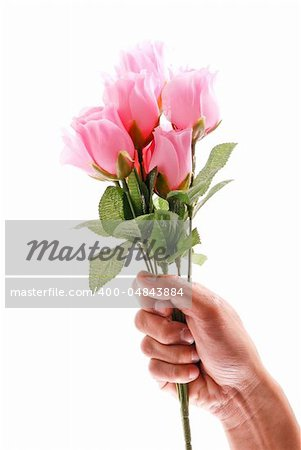 Hand Holding a Half Dozen Pink Roses Stock Photo - Budget Royalty-Free, Image code: 400-04843884