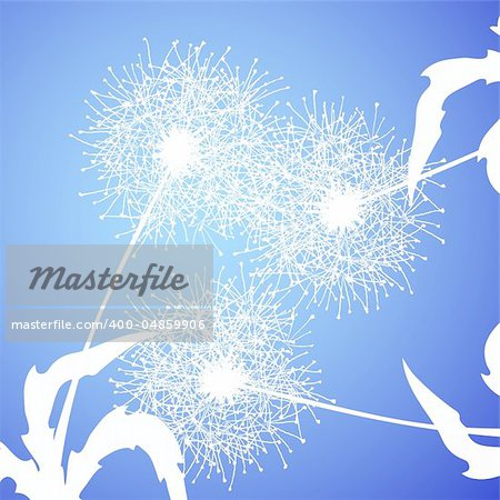Vector illustration of fluffy dandelions against blue background