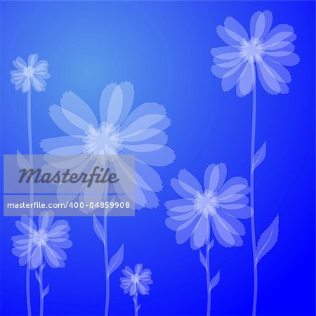 Vector illustration of white flowers against blue background