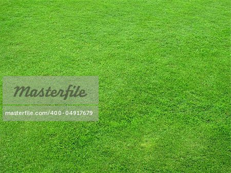 Beautiful green lawns perfectly cut for background Stock Photo - Budget Royalty-Free, Image code: 400-04917679