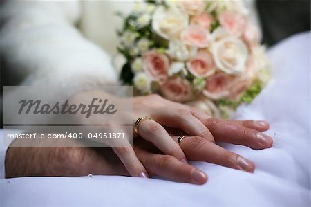 The groom keep the bride for hands Stock Photo - Budget Royalty-Free, Image code: 400-04951871