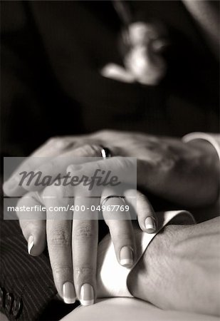 The groom keep the bride for hands. b/w+sepia Stock Photo - Budget Royalty-Free, Image code: 400-04967769