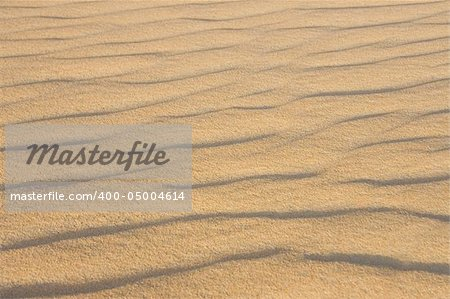 Sand in the desert of the Sahara (Egypt) Stock Photo - Budget Royalty-Free, Image code: 400-05004614