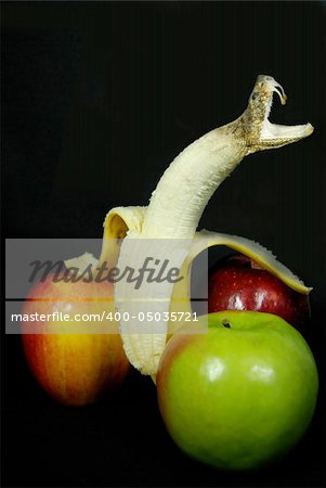 A peeled banana turning into a snake with apples on black. Stock Photo - Budget Royalty-Free, Image code: 400-05035721
