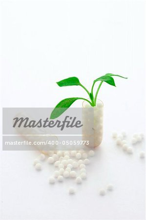 conceptual image of a homeopatyh pill. A little plant is sprouting from the opened pill Stock Photo - Budget Royalty-Free, Image code: 400-05059773