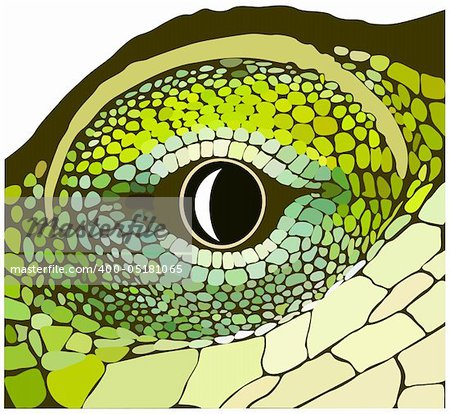 Eye of a reptile. Vector art in EPS format. Stock Photo - Budget Royalty-Free, Image code: 400-05181065