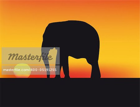 nice illustration of sunset in Africa with red sky and elephant Stock Photo - Budget Royalty-Free, Image code: 400-05191255