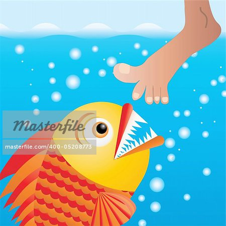 Cartoon piranha trying to bite the leg, vector illustration Stock Photo - Budget Royalty-Free, Image code: 400-05208773