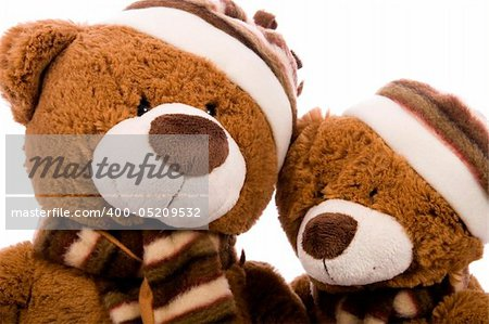 Teddy bear stodui shot