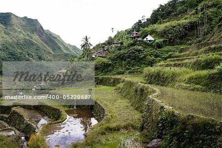 the world heritage ifugao rice terraces on the steep mountain slopes of batad in northern luzon in the philippines Stock Photo - Budget Royalty-Free, Image code: 400-05220687
