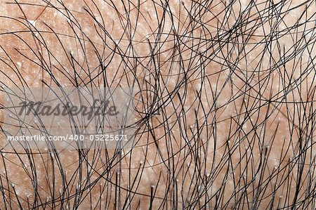 Close up on human hair Stock Photo - Budget Royalty-Free, Image code: 400-05225671