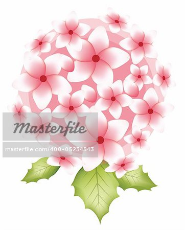 illustration drawing of pink flower with leaves