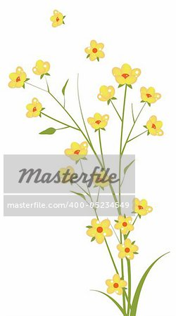 illustration drawing of yellow flower in a white background