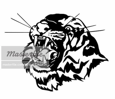 Head of an aggressive tiger. Vector illustration Stock Photo - Budget Royalty-Free, Image code: 400-05253814