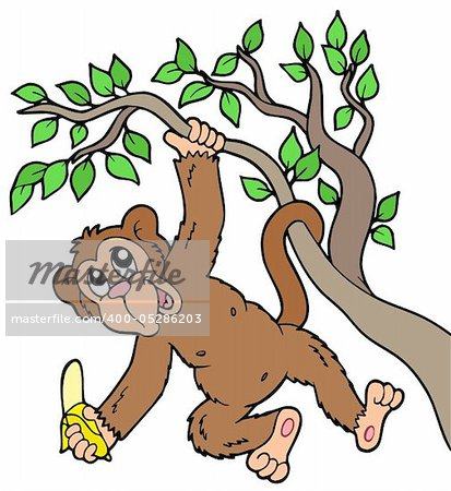 Monkey with banana on tree - vector illustration. Stock Photo - Budget Royalty-Free, Image code: 400-05286203