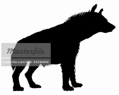 Hyena silhouette Stock Photo - Budget Royalty-Free, Image code: 400-05294944