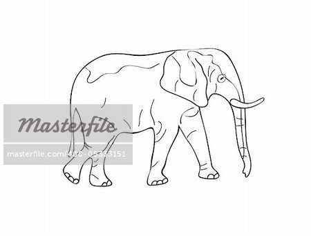 Standing Elephant Sketch. Black White Vector Illustration Stock Photo - Budget Royalty-Free, Image code: 400-05333151