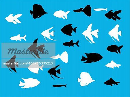 aquarium fish silhouette - vector Stock Photo - Budget Royalty-Free, Image code: 400-05335213