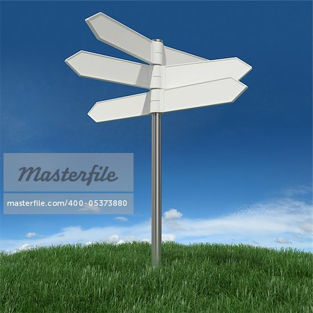Blank signpost on grass with sky background Stock Photo - Budget Royalty-Free, Image code: 400-05373880