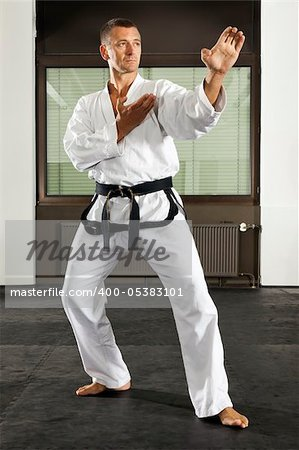 An image of a martial arts master Stock Photo - Royalty-Free, Artist: magann, Code: 400-05383101