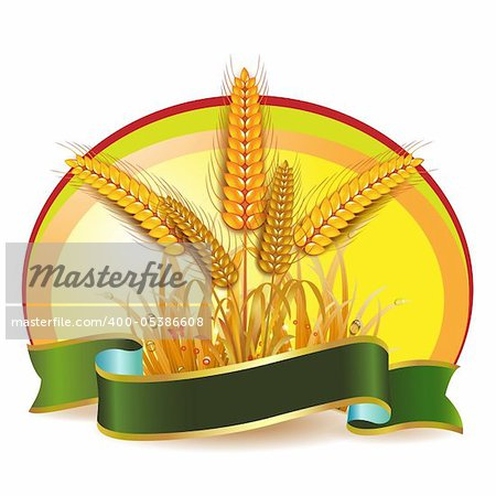 Wheat ears with ribbon Stock Photo - Budget Royalty-Free, Image code: 400-05386608