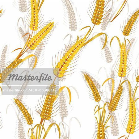 Seamless pattern with wheat ears Stock Photo - Budget Royalty-Free, Image code: 400-05386612