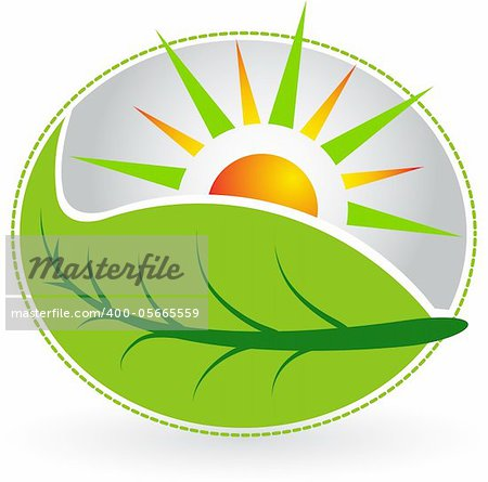 Illustration art summer leaf logo with  isolated background