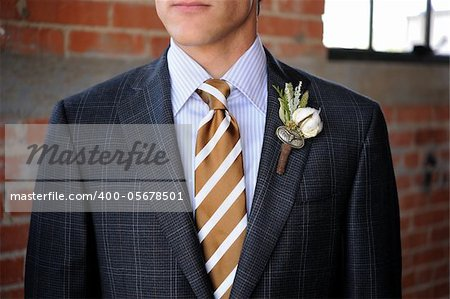 Image of a Gray Plaid suit with tan stripes and boutonniere Stock Photo - Budget Royalty-Free, Image code: 400-05678501