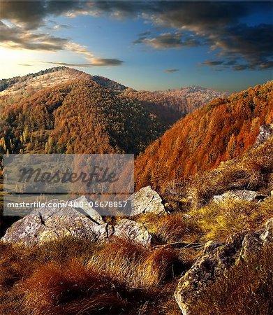 Mountain autumn forest. against a blue cloudy sky