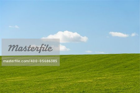 Farm Field With Blue Sky