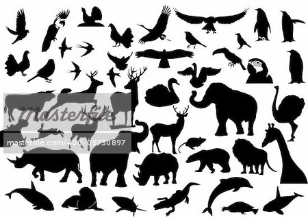 Contour images of fauna on the planet Earth Stock Photo - Budget Royalty-Free, Image code: 400-05730897