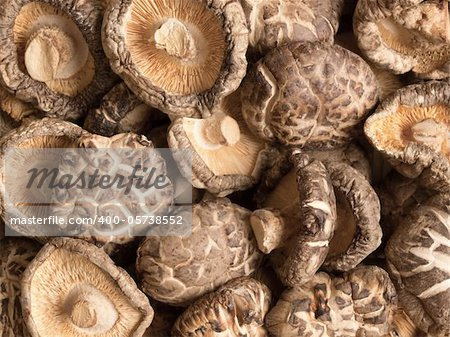 close up of dried shitake mushrooms food background