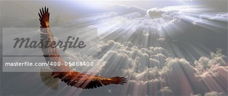 Eagle in flight above tyhe clouds Stock Photo - Budget Royalty-Free, Image code: 400-05888400