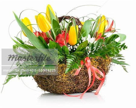 basket of yellow tulip flowers isolated on white background Stock Photo - Budget Royalty-Free, Image code: 400-05906225