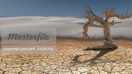 Dead Tree in Desert Stock Photo - Budget Royalty-Free, Image code: 400-06081150