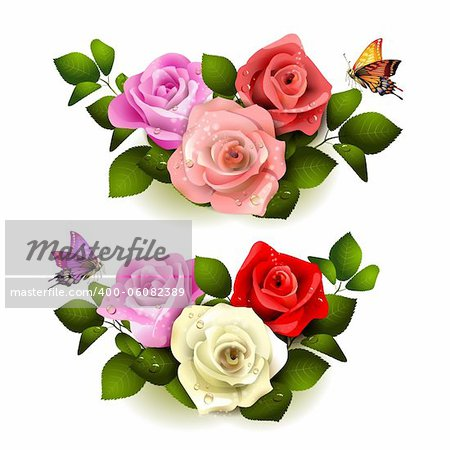 Roses with butterflies on white background Stock Photo - Budget Royalty-Free, Image code: 400-06082389