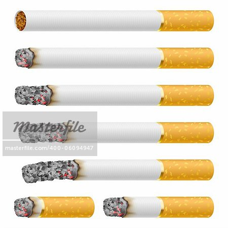 Set of Cigarettes During Different Stages of Burn. Each is isolated on white. Stock Photo - Budget Royalty-Free, Image code: 400-06094947