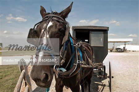 In a clash of cultures, an Amish horse and buggy are parked on a gravel lot beside a modern gas station Stock Photo - Budget Royalty-Free, Image code: 400-06141587