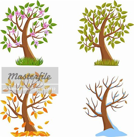 Spring, Summer, Autumn and Winter Tree Illustration. Stock Photo - Budget Royalty-Free, Image code: 400-06472922