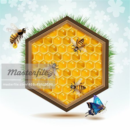 Wood frame with bees and honeycombs Stock Photo - Budget Royalty-Free, Image code: 400-06513580