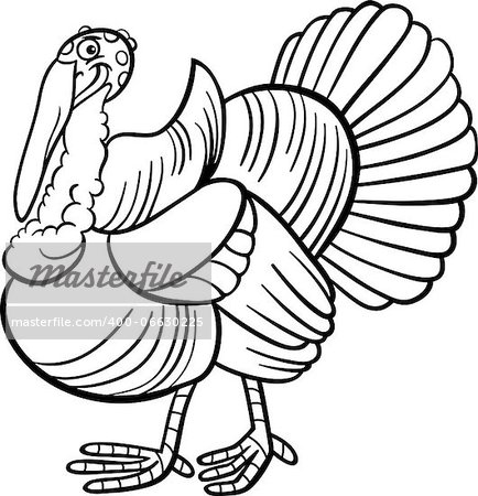 Black and White Cartoon Illustration of Funny Turkey Farm Bird Animal for Coloring Book Stock Photo - Budget Royalty-Free, Image code: 400-06630225