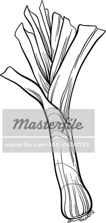 Black and White Cartoon Illustration of Leek Vegetable Food Object for Coloring Book Stock Photo - Budget Royalty-Free, Image code: 400-06747733