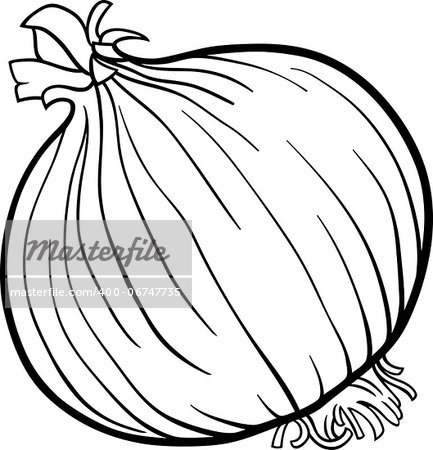 Black and White Cartoon Illustration of Onion Root Vegetable Food Object for Coloring Book Stock Photo - Budget Royalty-Free, Image code: 400-06747735