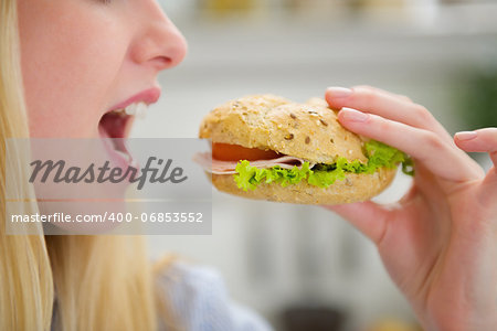 Closeup on teenager girl eating burger Stock Photo - Budget Royalty-Free, Image code: 400-06853552