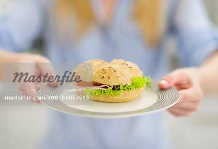Closeup on plate with sandwich in hand of young woman Stock Photo - Budget Royalty-Free, Image code: 400-06853593