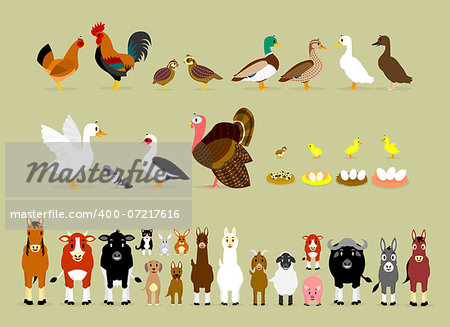 Cute Cartoon Farm Animal Characters including Birds (Hen, Rooster, Brown Quails, Mallard Ducks, Domestic Ducks, Goose, Pigeon, Muscovy Duck, Turkey, also Baby and the eggs of Quail, Chicken, Duck, and Goose) and Mammals in Front View version (Sheep, Llama, Donkey, Goat, Alpaca, Pig, Horse, Cow, Mule, Calf, Cow, Buffalo, Great Dane Dog, German Shepherd Dog, Cat, Hare, and Rabbit) Stock Photo - Budget Royalty-Free, Image code: 400-07217616