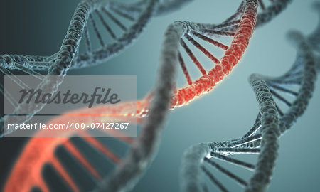 Long structure of the DNA double helix in depth of view. Stock Photo - Budget Royalty-Free, Image code: 400-07427267