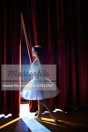 Arts and entertainment in theatre with female classic dancer in tutu, standing behind the scenes and looking at stalls Stock Photo - Budget Royalty-Free, Image code: 400-07553767