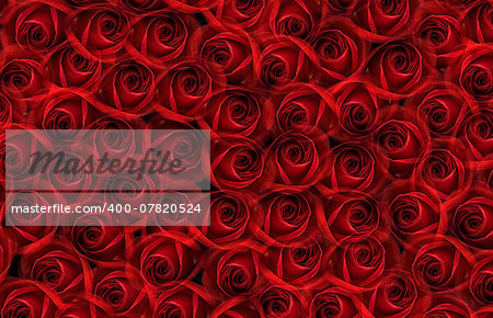many red rosesfills the whole image Stock Photo - Budget Royalty-Free, Image code: 400-07820524